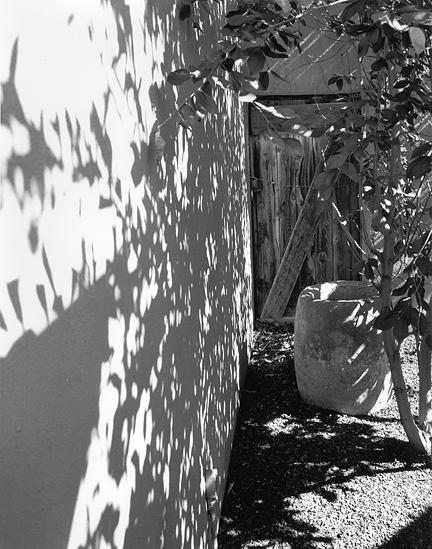 Hidden Door Photograph