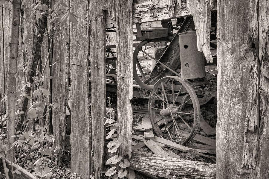Hidden Treasures Sepia Photograph