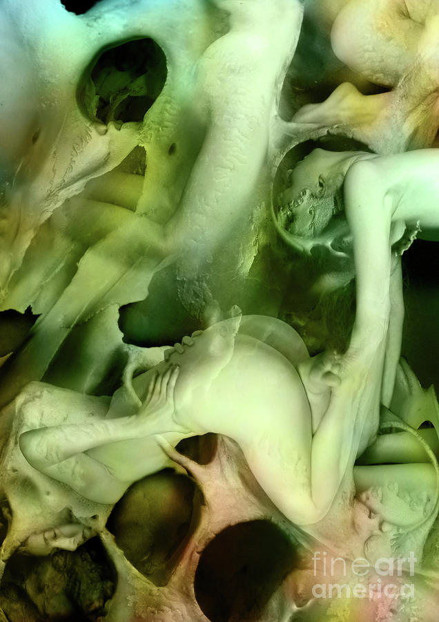 Hide Seek Woman Nude Sex Bone Love Sexuality Flesh Teenage Discovery Surreal Fantasy Bone Hole Skin Fun Play Playfull Game Friend Friendship Date Alice Wonderland Digital Art - Hide And Seek by Alexei Solha