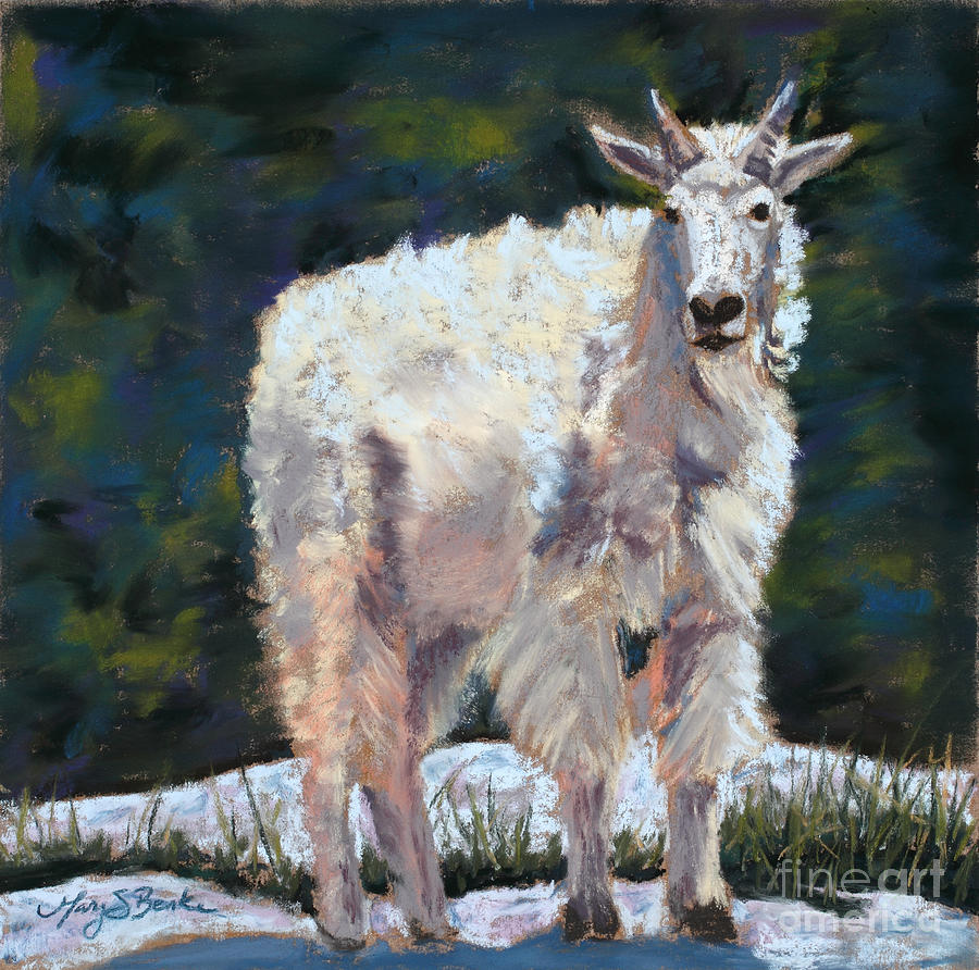 High Country Friend Painting  - High Country Friend Fine Art Print
