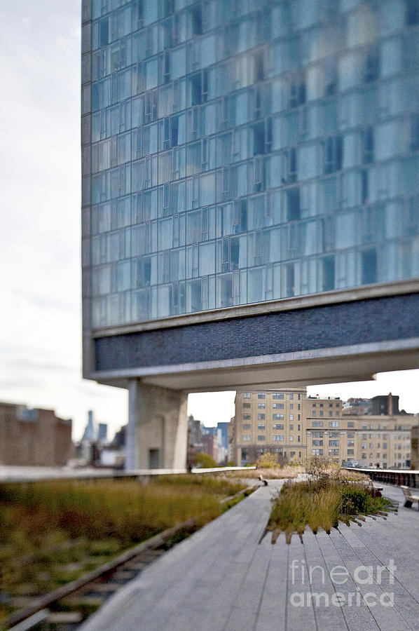 High Line Park And Hotel Photograph  - High Line Park And Hotel Fine Art Print