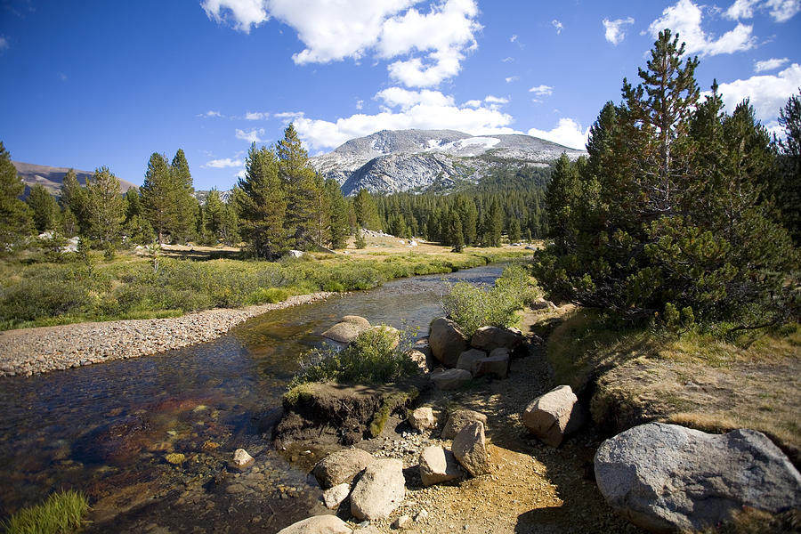 High Sierras Stream Photograph