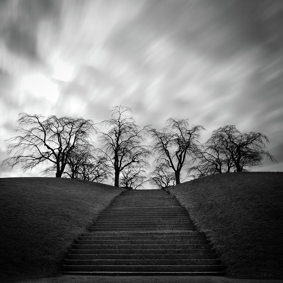 Hill, Stairs And Trees Photograph