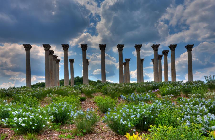 Hilltop Pillars Photograph