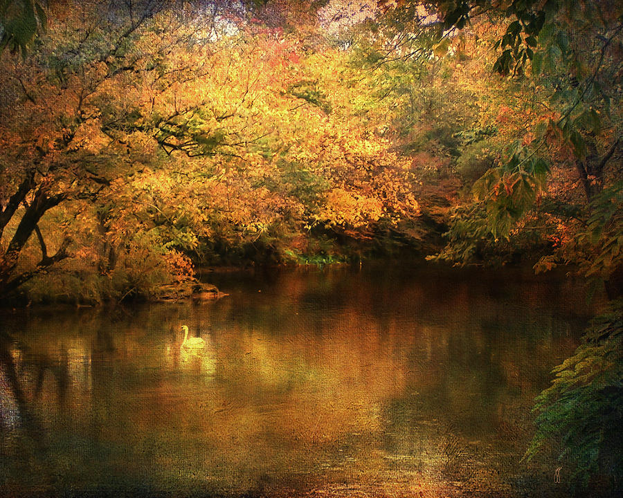 Hint Of September Photograph  - Hint Of September Fine Art Print