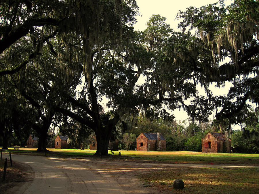 Historic Slave Houses At Boone Hall Plantation In Sc Photograph