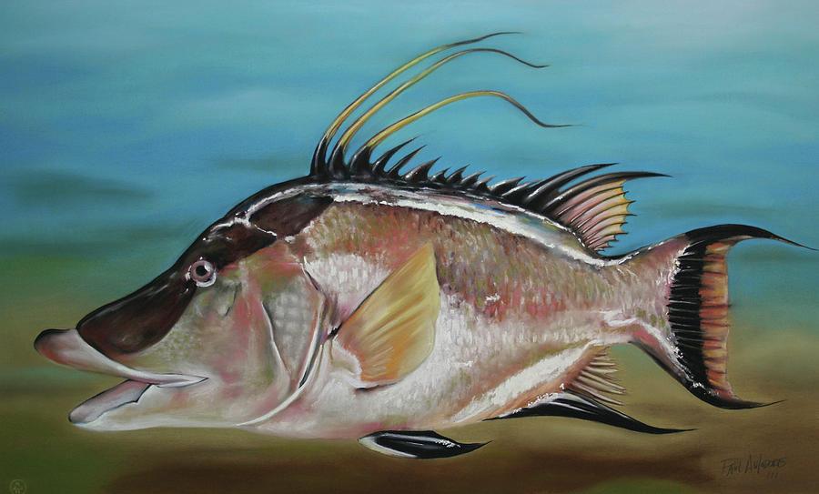 Hog Fish Pastel