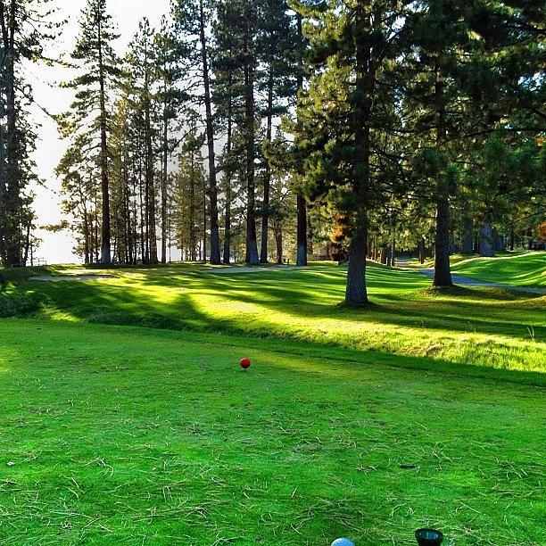 Golf course tee box
