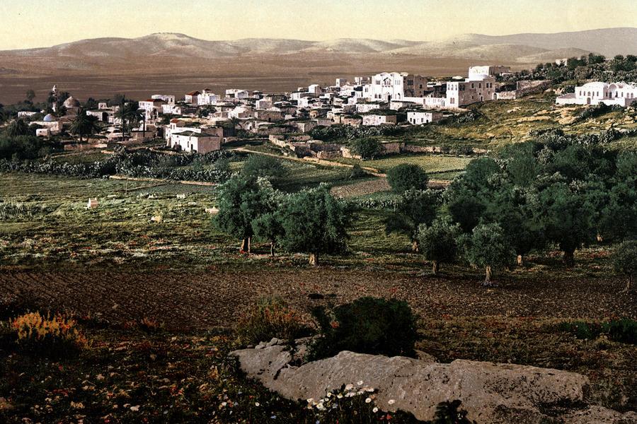 Holy Land - Jenin Photograph