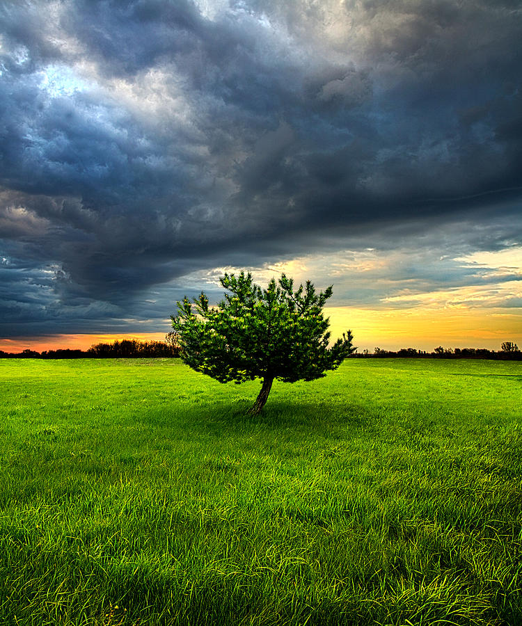 Horizons Photograph - Home Alone by Phil Koch