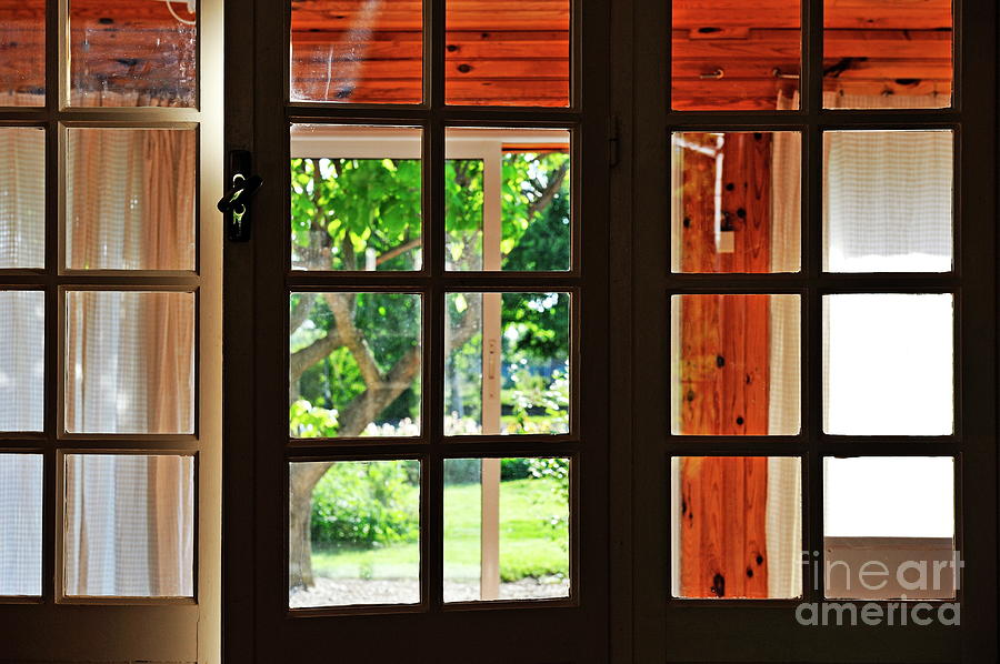 Home Garden Through Window Photograph  - Home Garden Through Window Fine Art Print