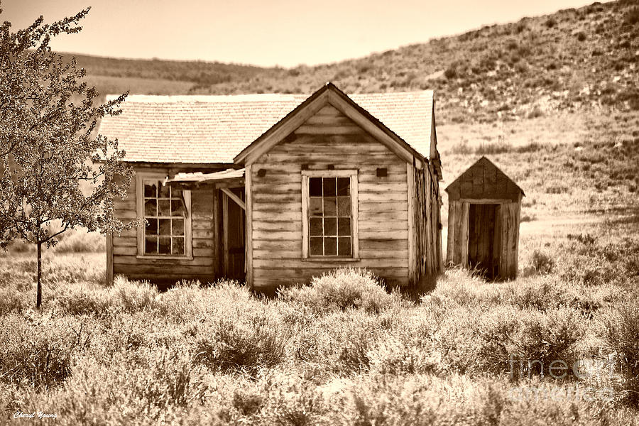 Homestead Photograph