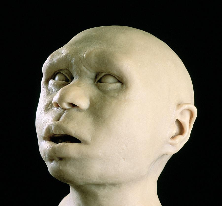 Homo Antecessor Photograph - Homo Antecessor Reconstruction by Javier Truebamsf