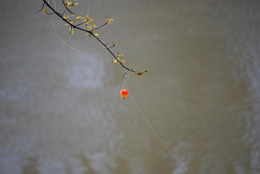 Hooked The Big One Photograph