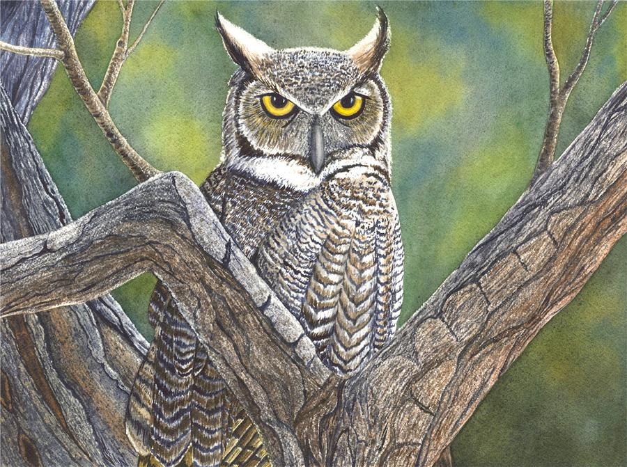 Hooter Painting