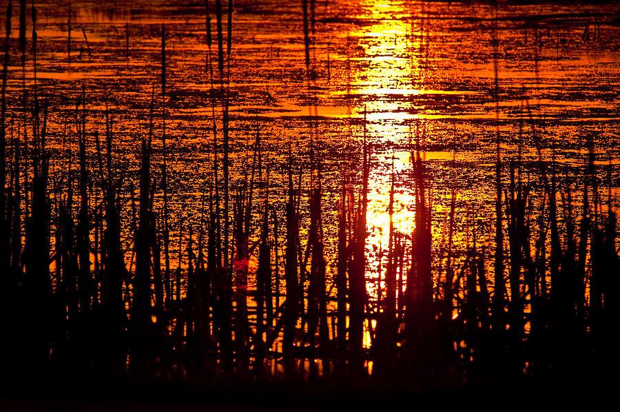 Horicon Photograph - Horicon Marsh Sunset Wisconsin by Steve Gadomski