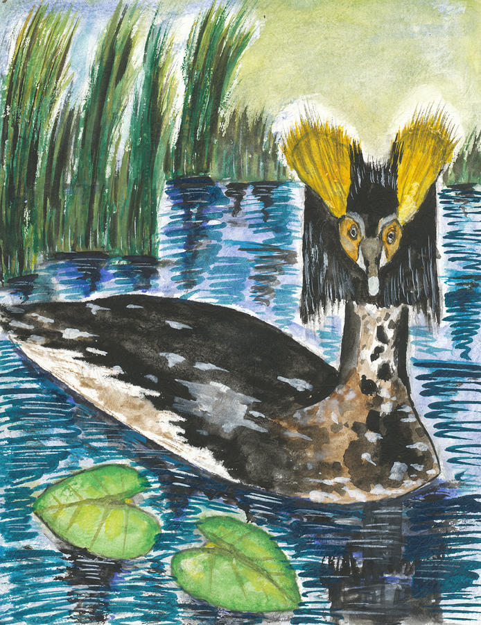 Horned Grebe Painting  - Horned Grebe Fine Art Print