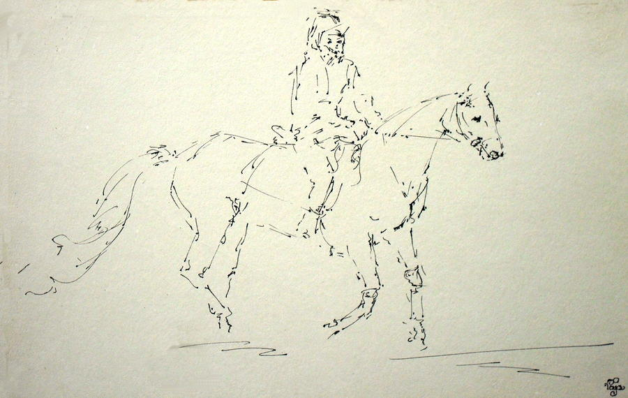 Horse 32 Drawing