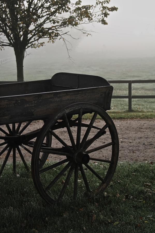 Horse Drawn In The Mist Photograph