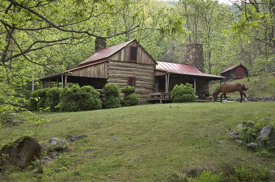 Horse Grazing In The Yard Of A Mountain Photograph