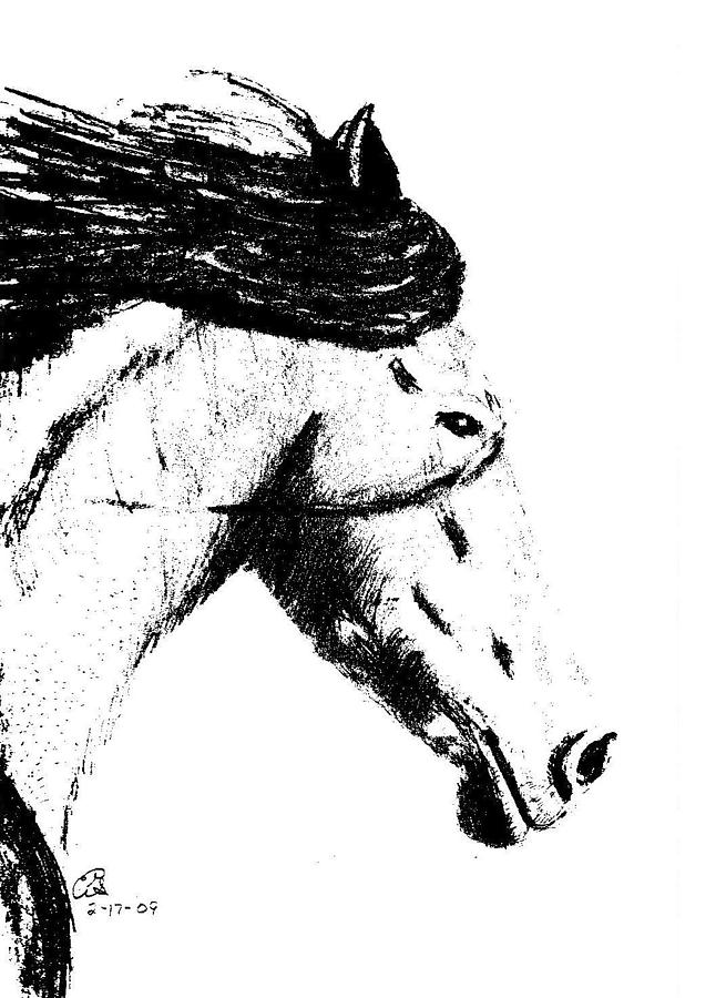 Black horse head drawing - photo#12