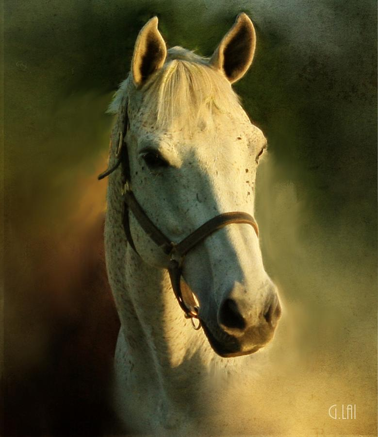 Horse Head Portriat Painting by George Lai