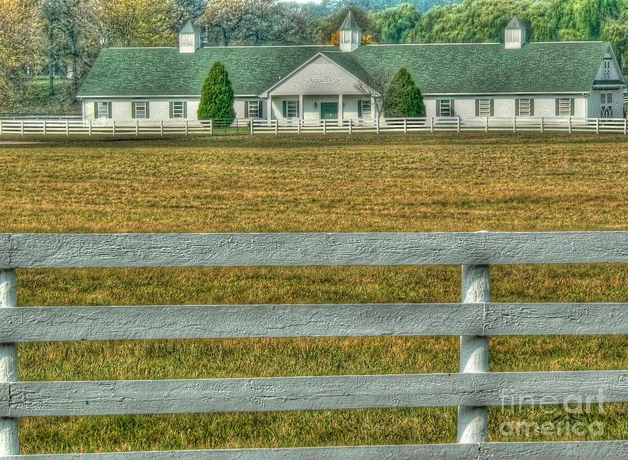 Horseland Photograph