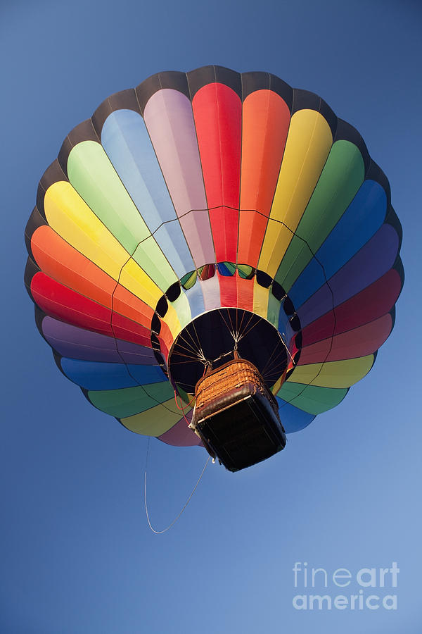 Hot Air Balloon In Flight Photograph  - Hot Air Balloon In Flight Fine Art Print