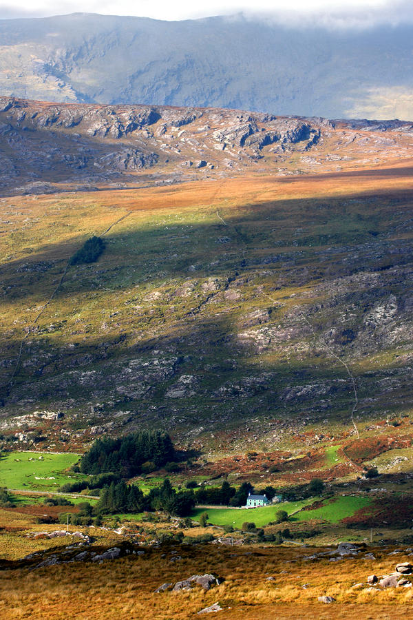 House In The Foothills Of The Kerry Mountains Photograph  - House In The Foothills Of The Kerry Mountains Fine Art Print