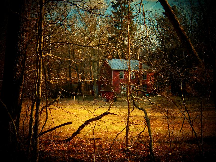 House In The Forest Photograph  - House In The Forest Fine Art Print
