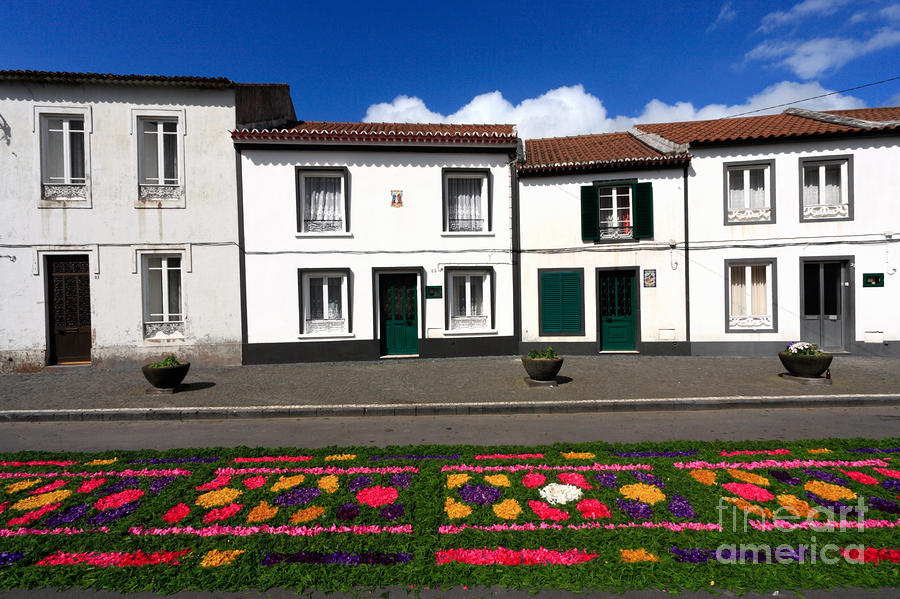 Houses In The Azores Photograph