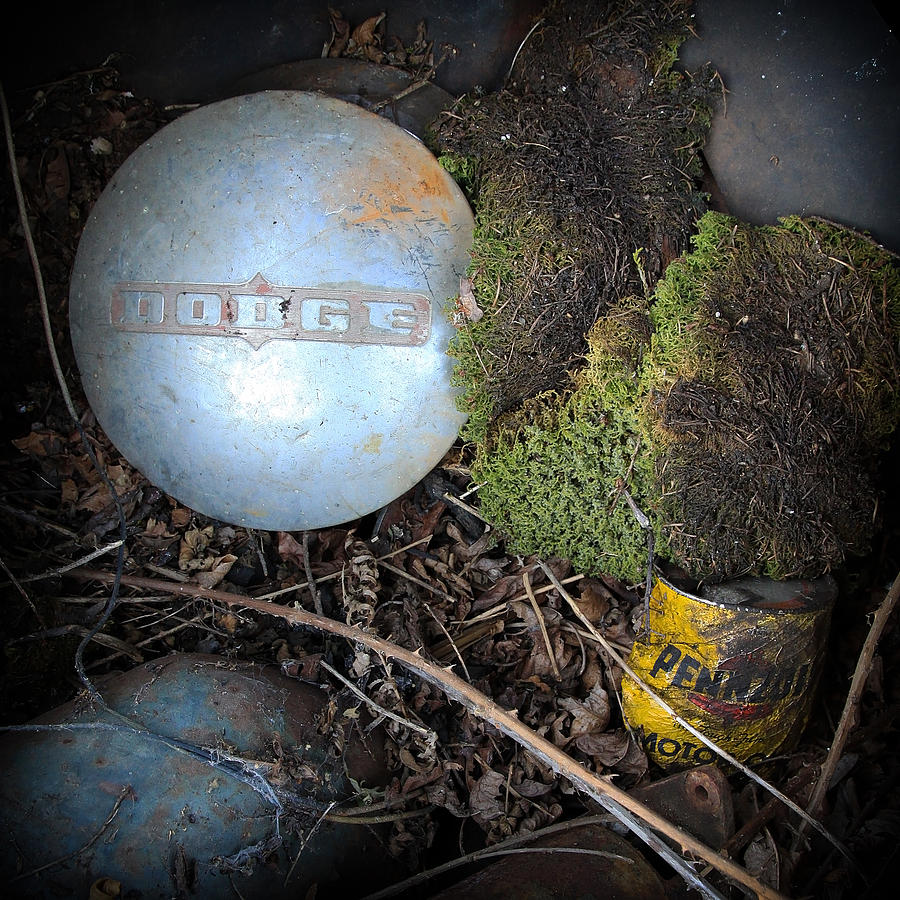 Hubcaps And Oil Cans Photograph  - Hubcaps And Oil Cans Fine Art Print