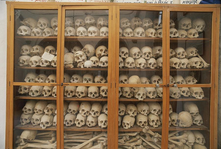 Human Skulls And Femurs Fill A Display Photograph
