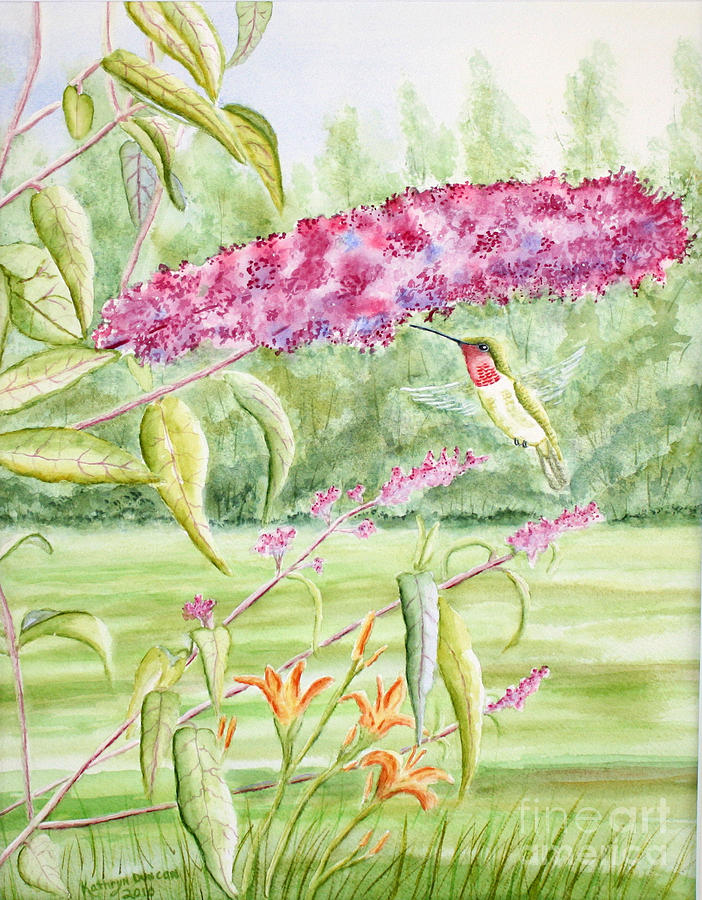 Hummer At Butterfly Bush Painting  - Hummer At Butterfly Bush Fine Art Print