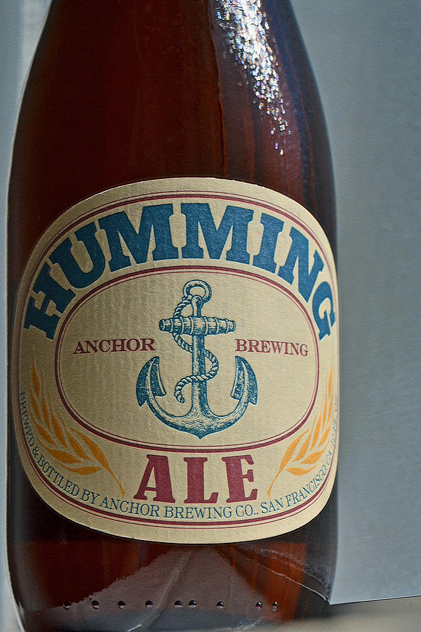 Humming San Francisco Ale Photograph