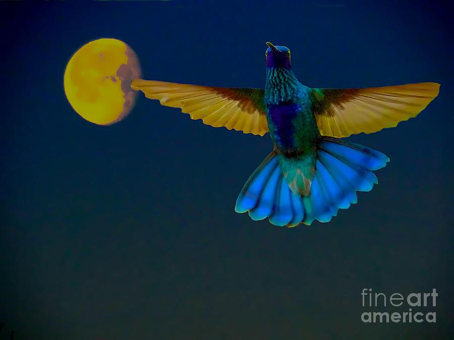 Al Bourassa Photograph - Hummingbird Moon by Al Bourassa