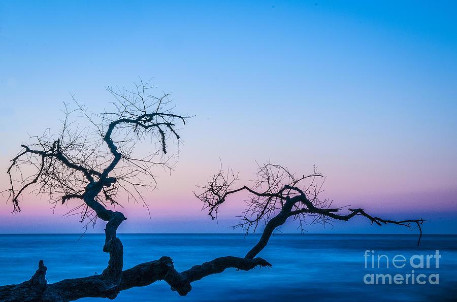Hunting Island Sunrise I Photograph