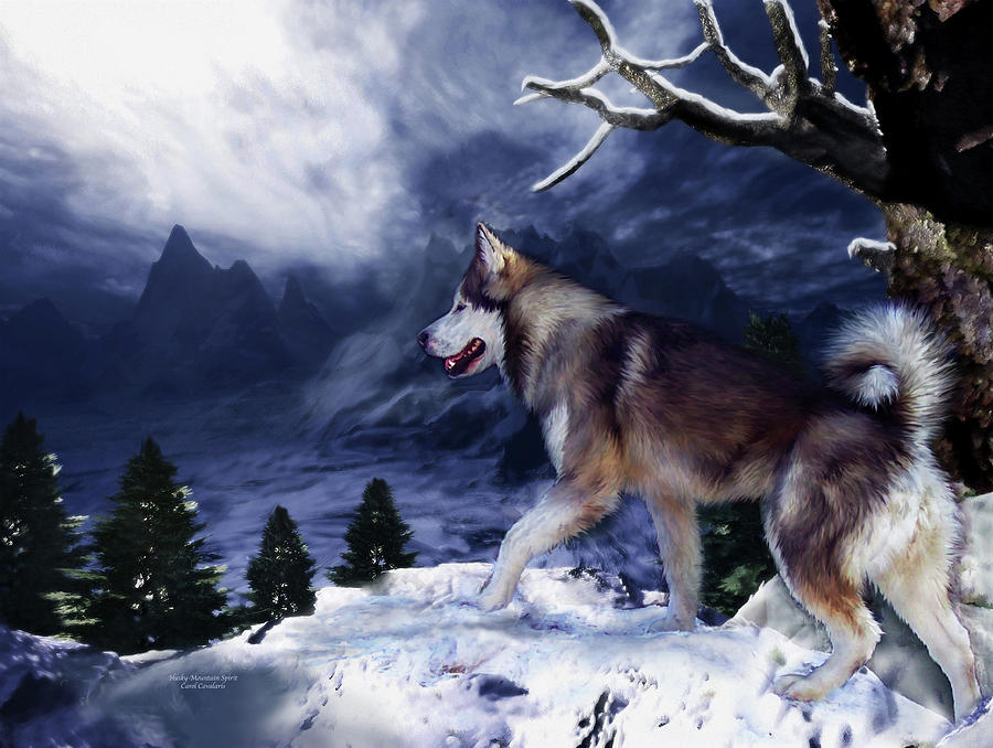 Husky - Mountain Spirit Mixed Media  - Husky - Mountain Spirit Fine Art Print
