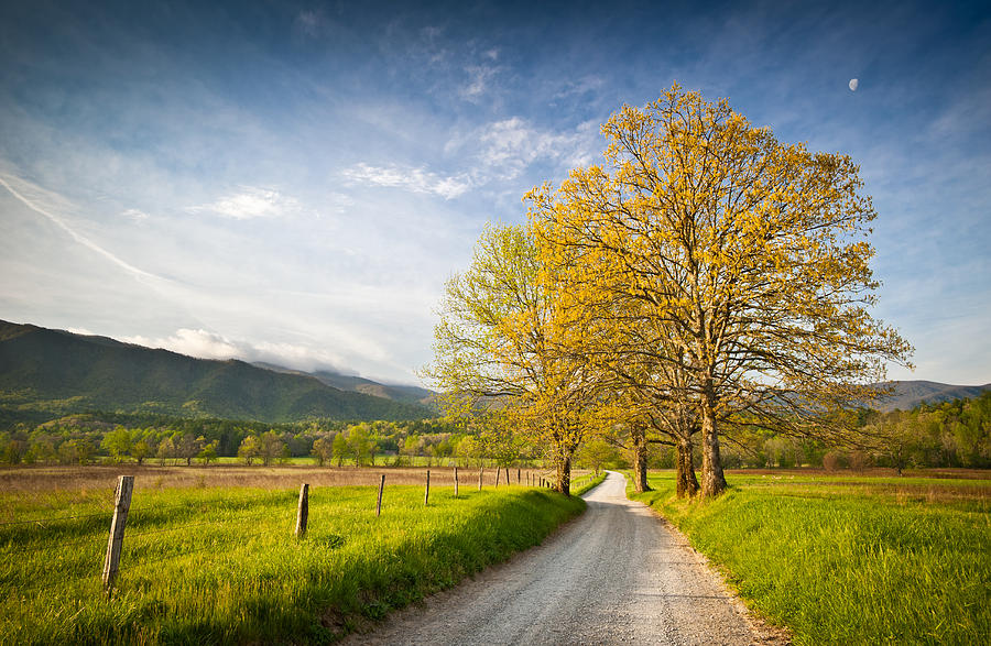 Hyatt Lane In Cades Cove - Smoky Mountains Photograph