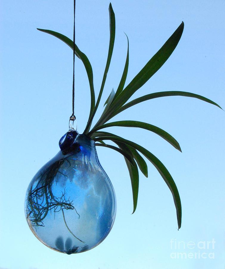 Jessica Schimpf Sculpture - Hydro-glass by Jessica Schimpf