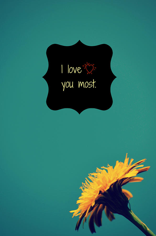 I Love You Most Photograph  - I Love You Most Fine Art Print