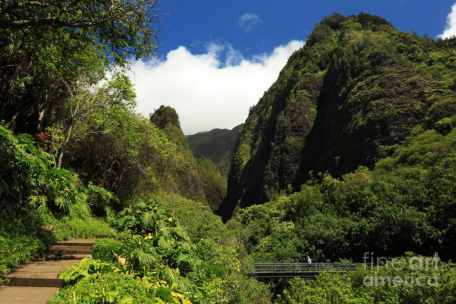 Iao Needle - Iao Valley Photograph  - Iao Needle - Iao Valley Fine Art Print