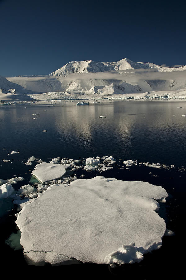 Icefloe In The Neumayer Channel Photograph