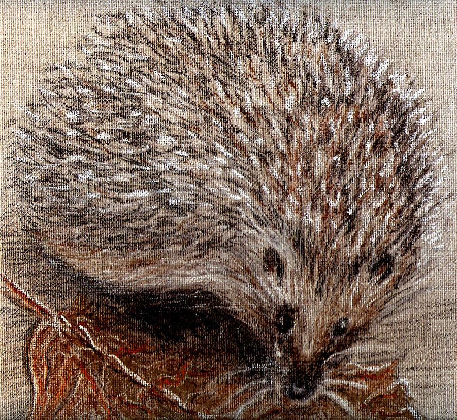 igel im herbst hedgehog in autumn by birgit schlegel. Black Bedroom Furniture Sets. Home Design Ideas
