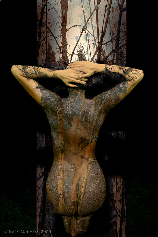Illustrated Woman Digital Art