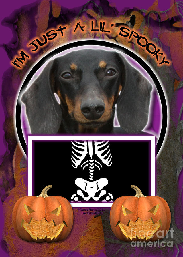 Im Just A Lil Spooky Dachshund Digital Art