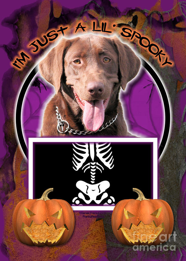 Im Just A Lil Spooky Labrador Digital Art