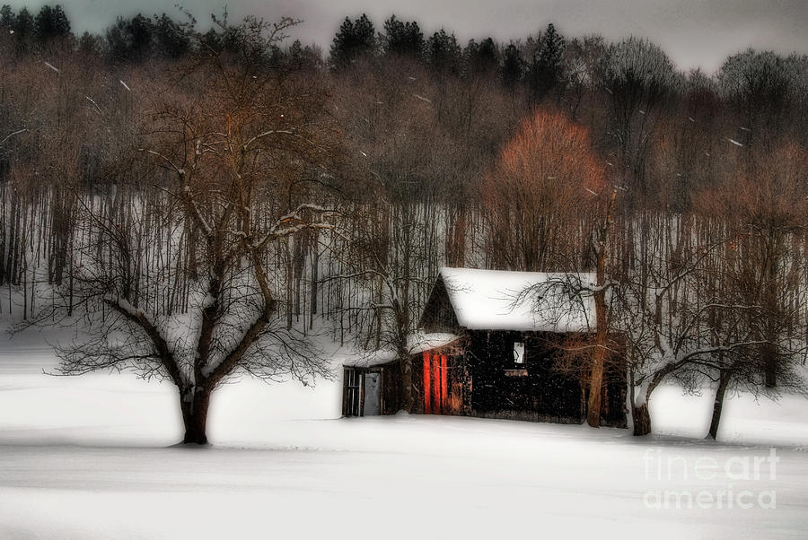 In Winter Photograph  - In Winter Fine Art Print