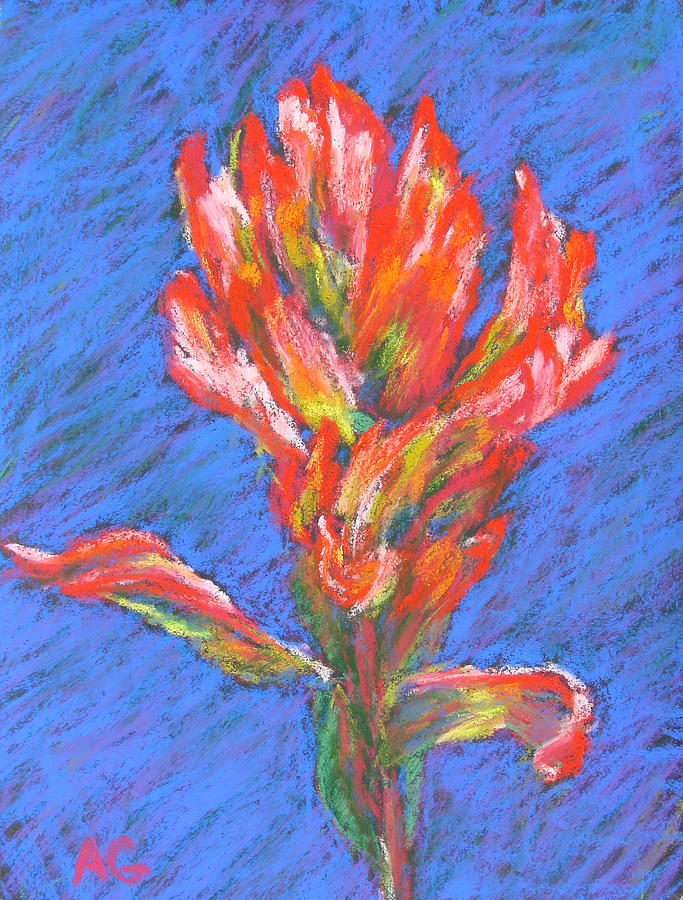 Indian Paintbrush Painting  - Indian Paintbrush Fine Art Print