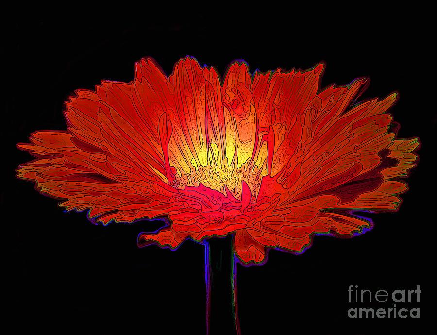 Inner Glow Photograph
